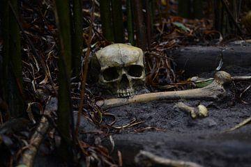 Skull and Bones van Sjoerd Reitsma