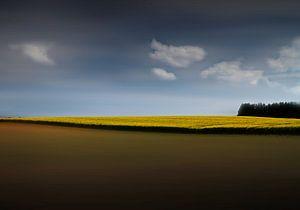 leeg landschap van Henk Speksnijder