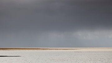 Annäherung an die Dusche über dem Wattenmeer von Dick Doorduin