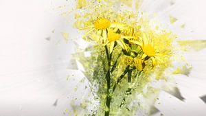 Yellowbreak