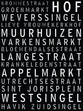 Amersfoort, bekende straten en pleinen van Maarten Knops