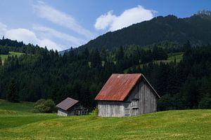 Het boerenleven in de Alpen