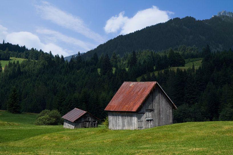 Het boerenleven in de Alpen sur Niels den Otter