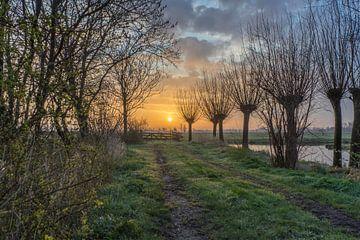 Kalter Sonnenaufgang im Polder von Rossum-Fotografie