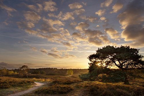 Scenic sunset von Babs Boelens