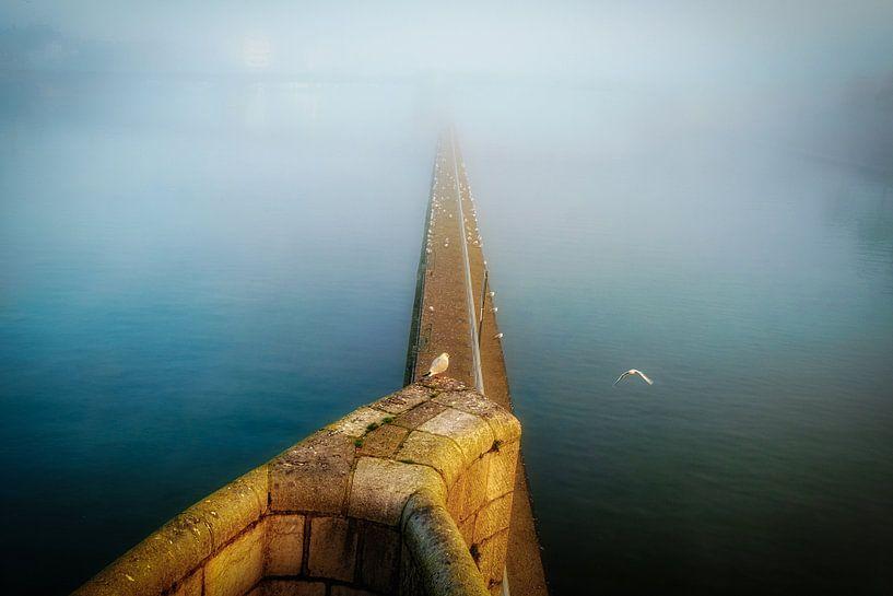 Nebel über der Maas von Jan Bakker