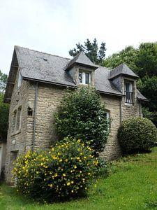 Huis met bloemenstruik