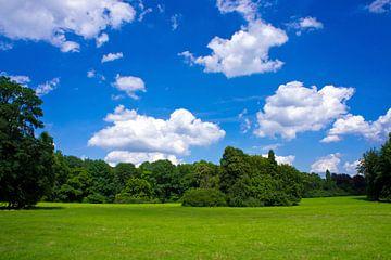 Parkland in Keulen van Martina Weidner