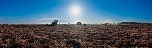 Strabrechtse Heide - Panorama van Noud de Greef