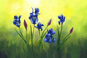 Bild von Schwertlilien in Blauviolett von Tanja Udelhofen