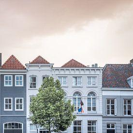 Scène de rue de maisons monumentales à Den Bosch | Pays-Bas sur Photolovers reisfotografie
