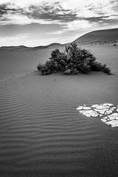 Zand Namibie van