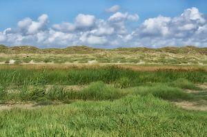 Duinlandschap in Denemarken van Iris Heuer
