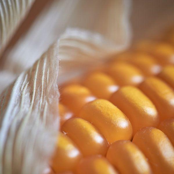 Detail van een maïskolf van Jenco van Zalk