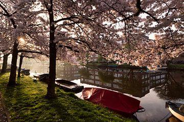 Voorjaar in Amsterdam langs de Josef Israelskade sur Leon Doorn