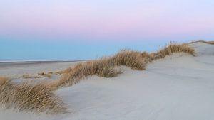 Pink Dunes 1