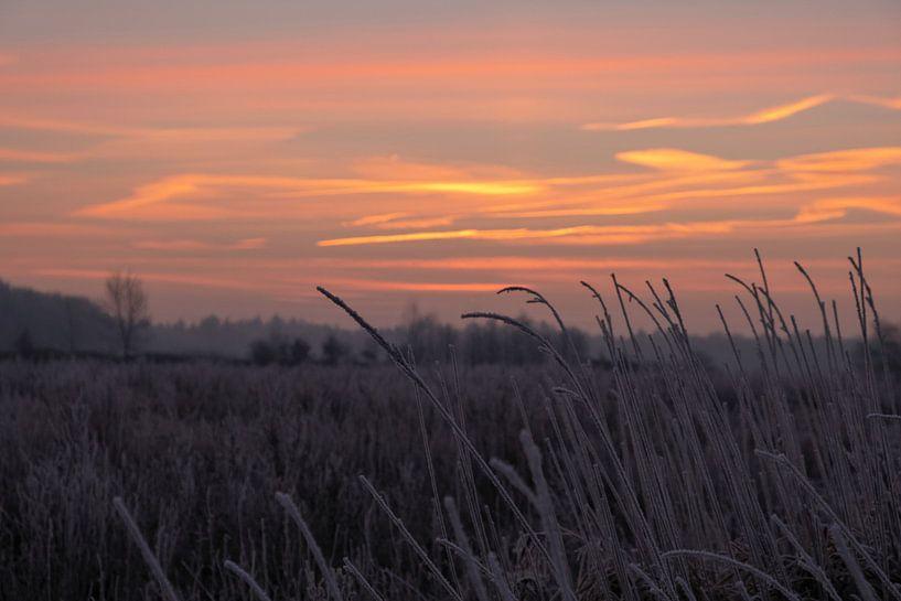 Mysterieuze morgen van Ilma Fotografie