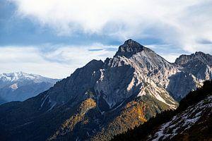 Koning van Oostenrijk en de alpen