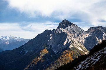 Koning van Oostenrijk en de alpen van Hidde Hageman