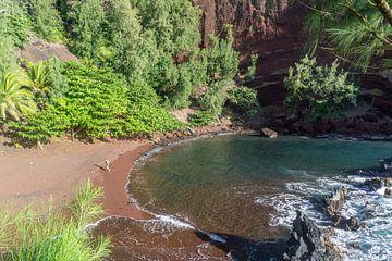 Red Sand Beach op Maui, Hawaii van Reis Genie