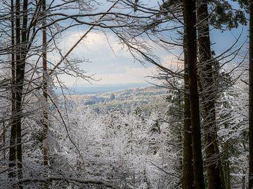 Uitkijkje met sneeuw van Picsall Photography