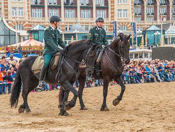 Cavalerie von Cees Petter