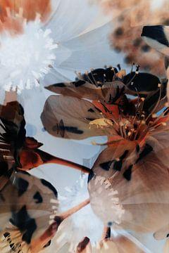 Blumen-Doppelbild-Infrarot-Makro von Lars Beekman