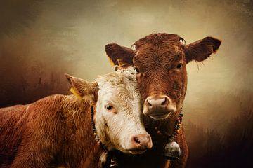 Deux vaches dans un paysage brumeux sur Diana van Tankeren