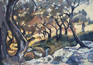 Nachmittagssonne im Olivenhain von Nop Briex