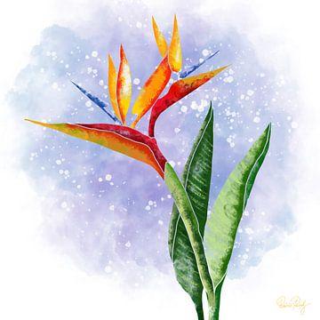 Blumenmotiv - Strelitzia Paradiesvogelblume van Patricia Piotrak