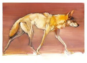 Arabischer Wolf