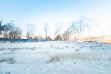 Abstract Winter landschap van Ilse Dijkstra