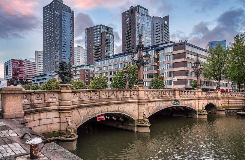 The bridge van Lorena Cirstea