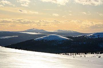 Uitzicht over de hoogvlakte van Zweden naar Noorwegen van Leo Schindzielorz