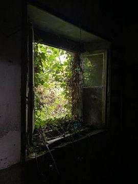 Een verlaten boerderij van matthijs iseger