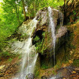 Tannegger waterval in de Wutach kloof, Duitsland van Jörg Hausmann