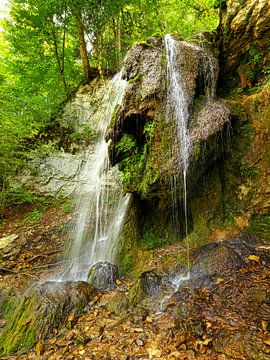 Tannegger waterval in de Wutach kloof, Duitsland