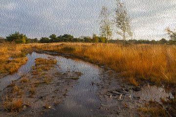 Kempische zandgronden, penseelstreken