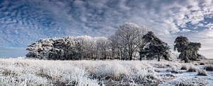 Panorama Winterlandschap Nederland van
