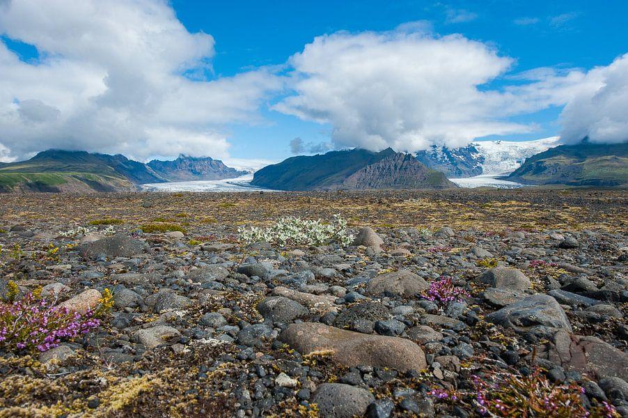 gletsjers on Island
