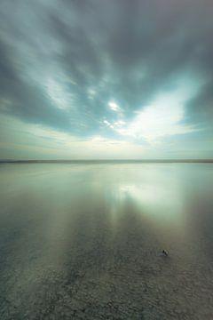 Maasvlakte 28 von Deshamer