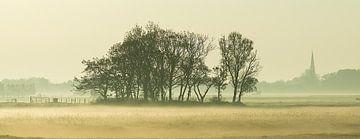 Mistig landschap  von Dirk van Egmond