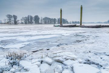 Cold von Jan Koppelaar