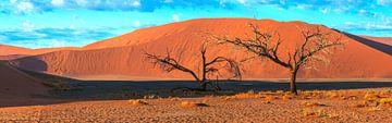 Bomen voor de rode duinen van de Sossusvlei, Namibië van Rietje Bulthuis