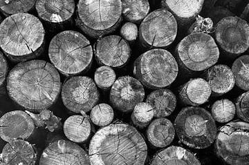 Stapel houten stammen | zwart-wit von Jos van Ooij