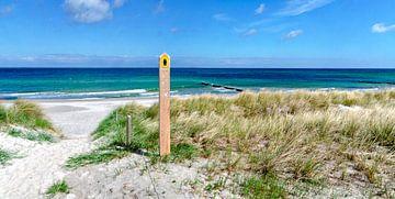 Baltisch strand van Leopold Brix