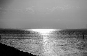 Horizon von Brian Morgan
