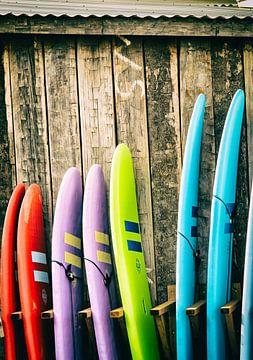 Surfboards van Rogier Steyvers