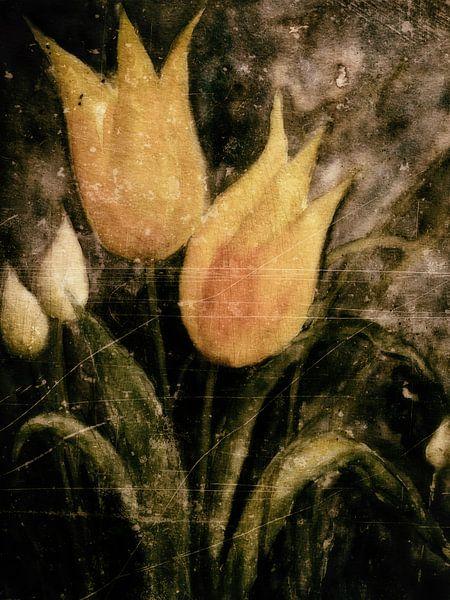 Gele tulpen in het voorjaar 's nachts van Christine Nöhmeier