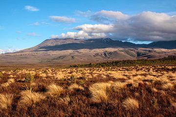 Landschap in Tongariro National Park, Nieuw-Zeeland van Christian Müringer